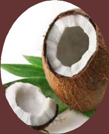 Extra Virgin Organic Coconut Oil Benefits